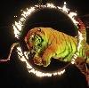 Цирки в Топках